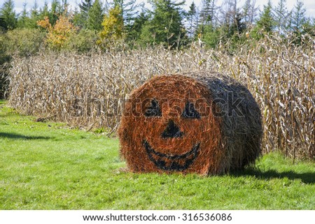Halloween decorated straw bale on a farm in rural Prince Edward Island, Canada. #316536086