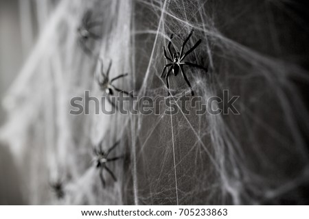 halloween, decoration and horror concept - black toy spiders on artificial cobweb