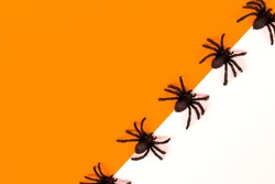 Halloween decorations concept. Halloween with spiders on orange and white background.