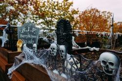 Halloween decorations for seasonal holiday.