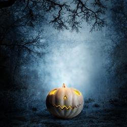 Halloween design - Forest pumpkin. Horror background.