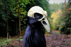 Halloween holiday concept. Skull crow costume. Scary bird in the dark autumn forest.Horror and fear.  Mystery and scary tales concept. Dark fantasy symbol. man in white bird skull mask and black cloak