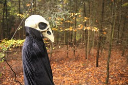 Halloween holiday . Skull crow costume. Scary bird in the autumn forest.Horror and fear. man in white bird skull mask and black cloak. Autumn holidays time. halloween mood