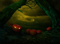 Halloween landscape with pumpkins Jack-o'-lantern under scary crooked trees on dark night dramatic sky background