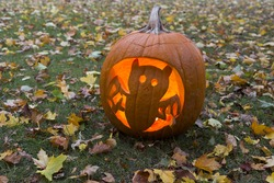 Halloween lighted bat carved pumpkin on lawn covered in dry leaves