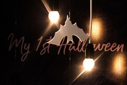 Halloween party decoration. The symbol of the bat is next to two incandescent lamps on a dark background.