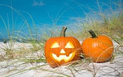 Halloween party on the beach. Pumpkin Jack-o'-lantern. Jack o lantern for Happy Halloween. Autumn season. On background ocean. Autumn in Florida. Fall season. Copy space.