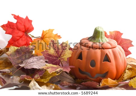 halloween pumpkin and leaves