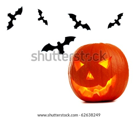 Halloween pumpkin & bats isolated on white