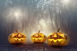 halloween pumpkin head in spooky woods background, halloween background