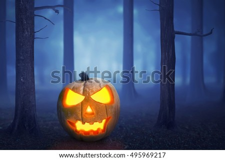 Halloween pumpkin in a mystical forest in the moonlight #495969217
