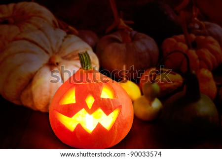 Halloween pumpkin Jack o lantern candle glowing with varied species [Photo Illustration]