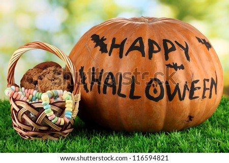 Halloween pumpkin on grass on bright background