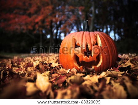 Halloween pumpkin on leaves in woods in high contrast color