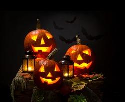 halloween pumpkins and bat with lanterns on dark background