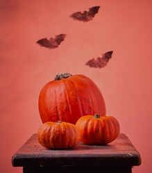 Halloween pumpkins and bats with cool gradient background.