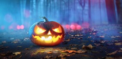 Halloween Pumpkins Glowing In Fantasy Night Forest . Jack O Lantern Holiday Horror Background