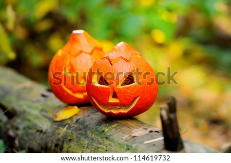 Halloween scary pumpkin in autumn forest