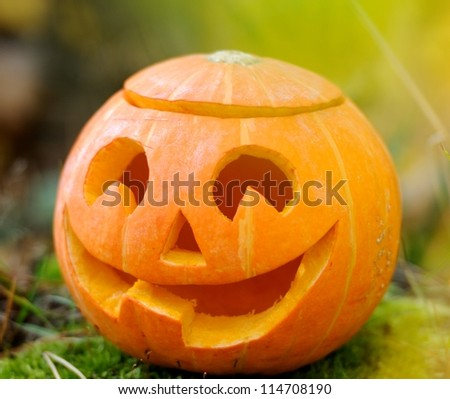 Halloween scary pumpkin with a smile in autumn forest