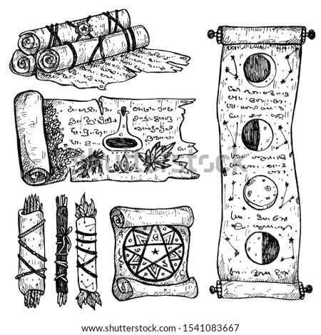 Halloween set of ink scrolls. Magic scrolls, scrolls with spells,astronomy, alchemy, herbal studies. Isolated on white. Line art, stylization