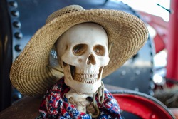 halloween skeleton. A skeleton is wearing a straw hat, a Halloween decoration. Place for text