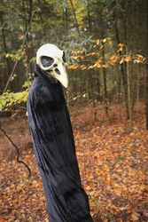 Halloween. Skull crow costume. Scary bird in the autumn forest.Horror and fear concept. man in white bird skull mask and black cloak. Autumn holidays time. halloween mood