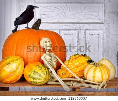 Halloween still life with skeleton, black bird and pumpkin on a wooden crate