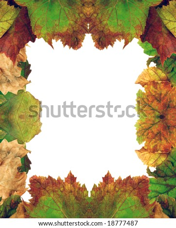 Halloween, Table with autumn leaves
