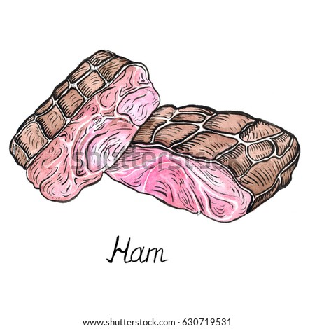 Ham, hand painted illustration, watercolor and ink outline