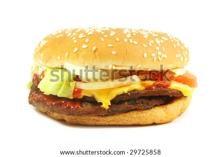 Hamburger Cheese Isolated on a White Background
