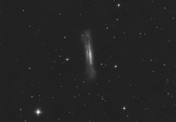 Hamburger galaxy or NGC 3628 in the Leo constellation, it is a part of a group called, Leo triplet. Taken with my telescope.