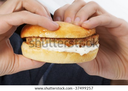 hamburger in the hands