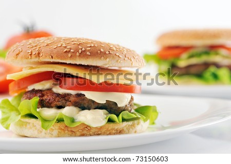 hamburger with cutlet and vegetables on dish