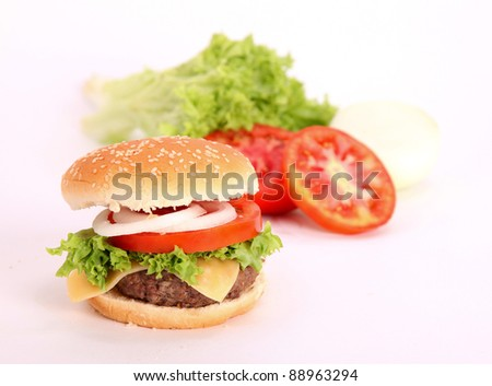 hamburger with vegetable and meat. photography