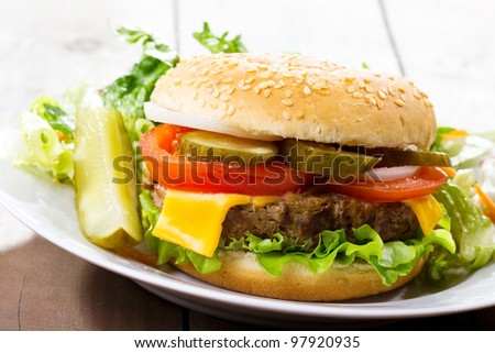 hamburger with vegetables and salad - stock photo