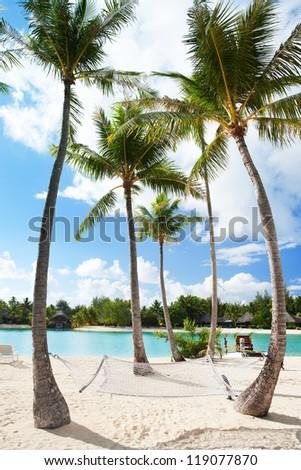 Hammock between palm trees at beach on Bora Bora - stock photo