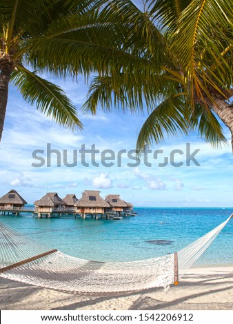 hammock between palm trees by the sea and houses over water on background. Polynesia. Tahiti