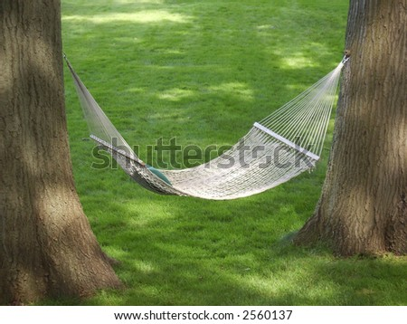 hammock between two oak trees - stock photo