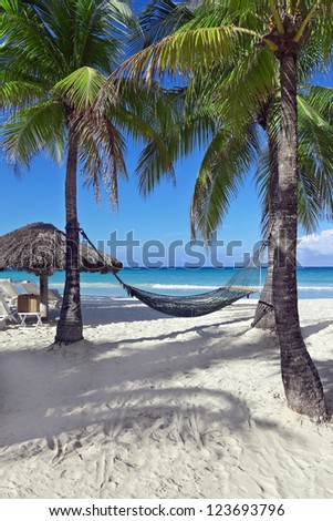 Hammock between two palm trees beside the ocean on a tropical resort.