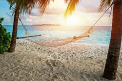 hammock on a palm tree and sunset glare near sea ocean sky shore sand