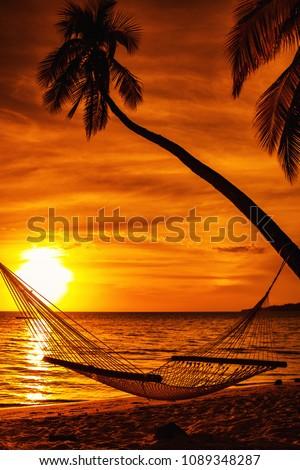 Hammock on a palm tree during beautiful sunset on tropical Fiji Islands