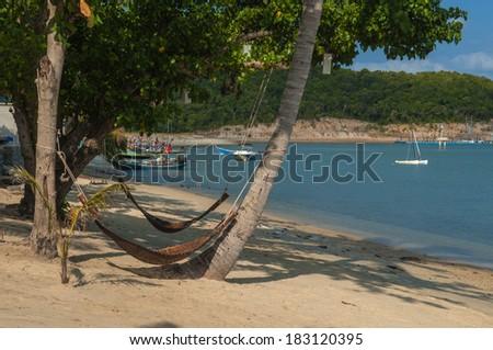 Hammock tied to coconut trees Beach sand