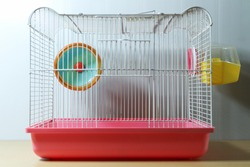 hamster wheel in old and empty hamster white and pink cage on wood desk