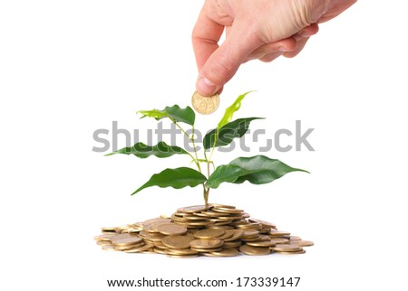 Hand and green plant growing from the coins. Money financial concept.