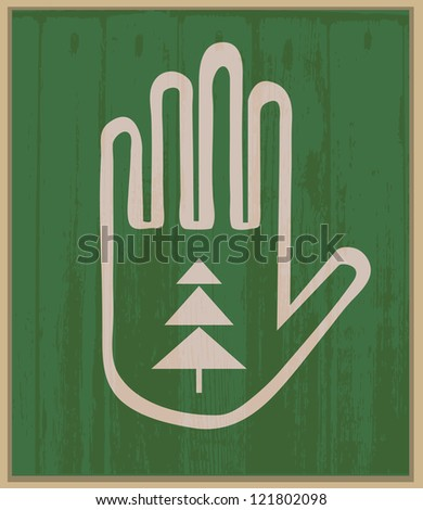 Hand and spruce - stock photo