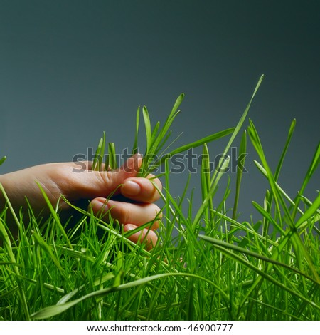 Hand and wet green grass over gray background