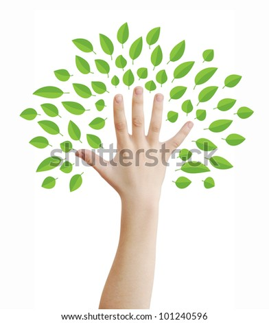 Hand as a tree with green leaves concept, isolated on white, clipping path