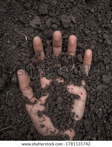 Hand buried in the soil. Foto stock ©