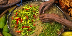 Hand checking dried chili pepper in a bamboo Basket
