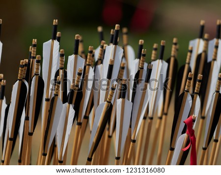 hand crafted arrows in medieval style each arrow with black and white color on the feather